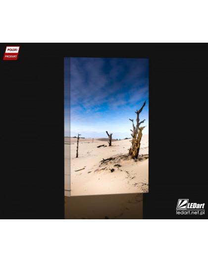 Ruchome wydmy w Łebie Obraz podświetlany LED pion