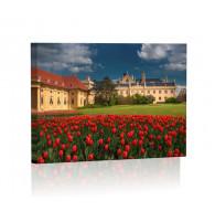 Wiosna w pałacu w Lednicach Obraz podświetlany LED