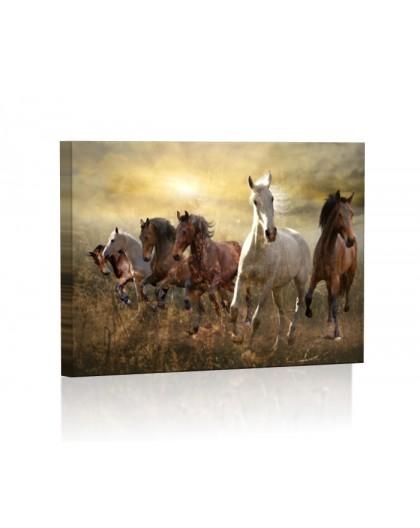Galopujące konie DESIGN Obraz z oświetleniem LED prostokątny
