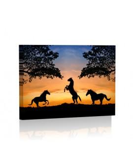 Konie DESIGN Obraz z oświetleniem LED prostokątny