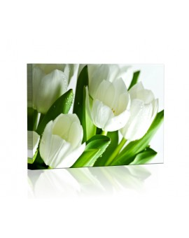 White tulips DESIGN rectangular