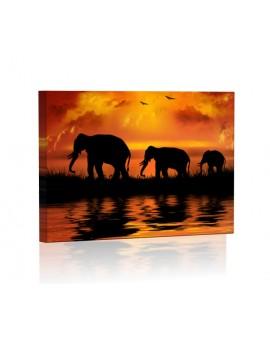 Rodzina słoni DESIGN Obraz z oświetleniem LED prostokątny