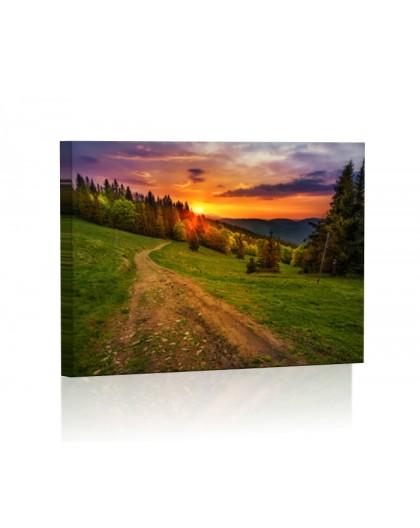 Leśna droga DESIGN Obraz z oświetleniem LED panorama