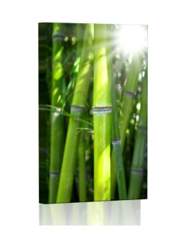Bamboo DESIGN vertical