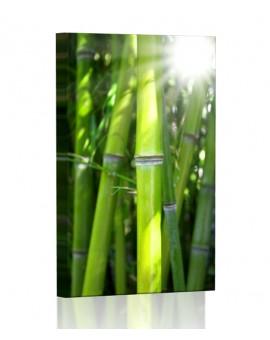 Bambus DESIGN Obraz z oświetleniem LED pionowy