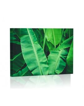 Tropikalne liście bananowiec Obraz podświetlany LED