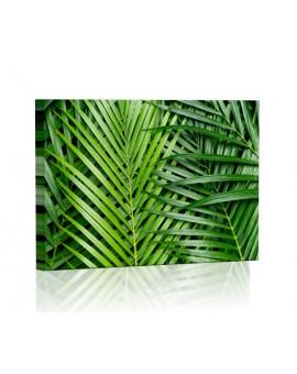 Tropikalne liście palmy Obraz podświetlany LED